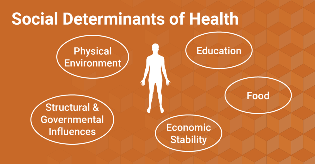 Graphic depicting five social determinants of health: physical environment, structural & governmental influences, education, food, and economic stability