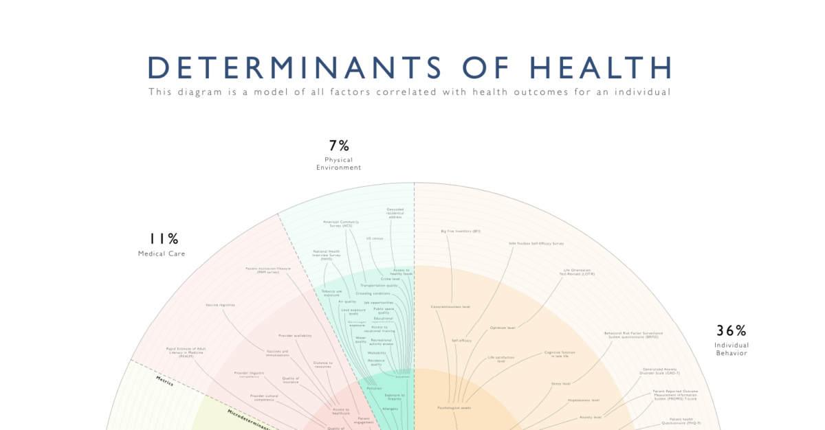 Graphic displaying social determinants of health