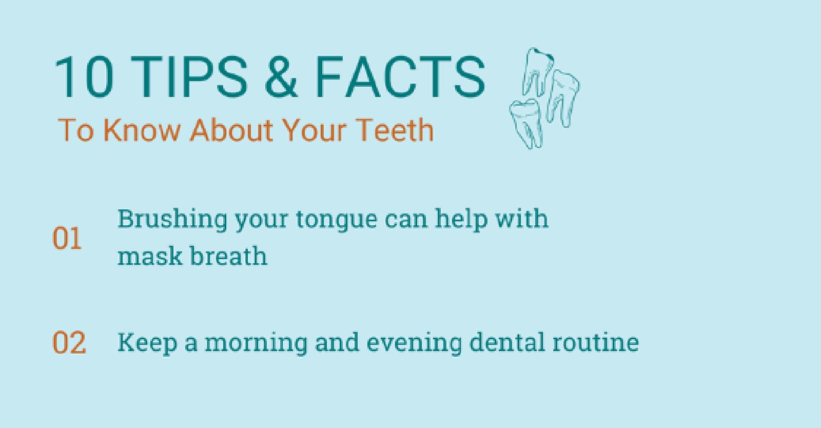 10 Things You Should Know About Your Teeth